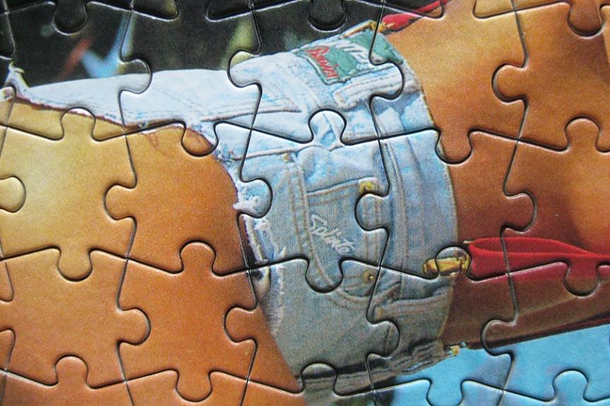 step puzzle_moto girl_900 IMG_5859.jpg
